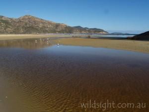 Norman Bay, Wilsons Promontory