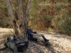 Resting in a dry creek bed
