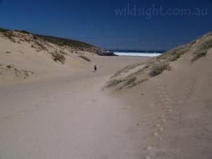 Walking to Sandy Bay