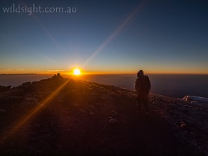Mt Kilimanjaro, Africa, summit, sunrise