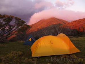 Tents near Little Feathertop