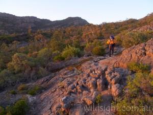Track between Mount Gar and Briggs Bluff