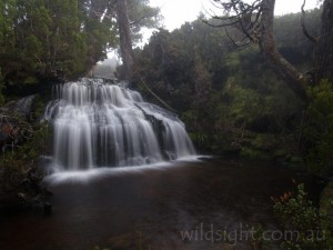 Waterfall Valley, Overland Track