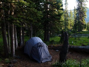 Campsite beside Diamond Lake