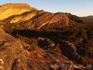 Mount Stapylton at sunset