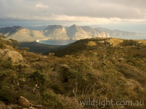 The Hazards and Wineglass Bay from the summit of Mount Graham