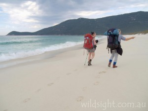 Trekking along Waterloo Bay