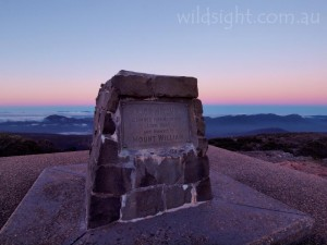 Dawn on Mount William