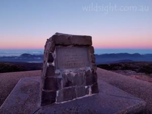 Dawn on Mount William