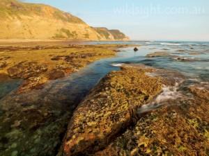 Wreck Beach rockpools