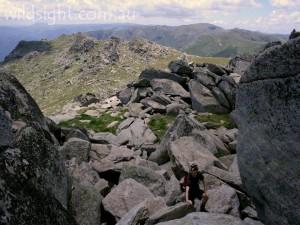 Climbing Mount Townsend
