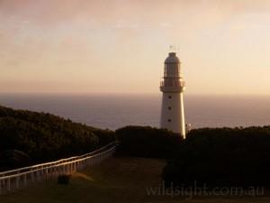 Cape Otway Lighthouse, sunset