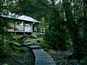 Windermere Hut, Overland Track