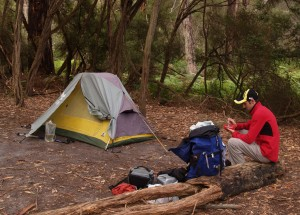 Refuge Cove campsite