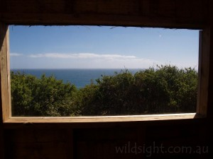View from toilet at Devils Kitchen campsite, Great Ocean Walk