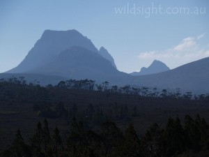 Cradle Mountain from the south