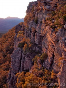 Cliffs of Mount Rosea at sunrise