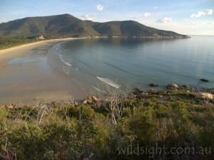 Oberon Bay