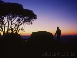 Dawn on Mount Speculation