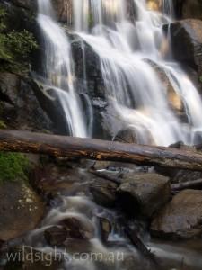 Toorongo Falls, Noojee
