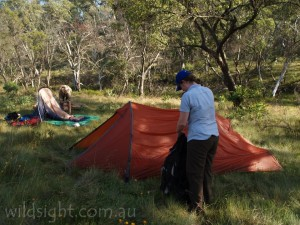 Camping on the banks of Conglomerate Creek, above Bryce's Gorge