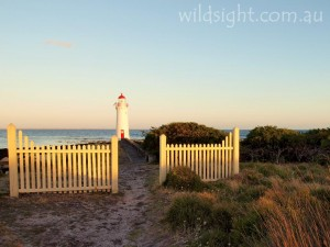 Port Fairy lighthouse, Griffiths Island