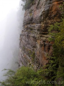 Cliffs below Echo Point in cloud