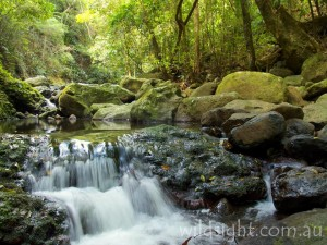 Coomera River
