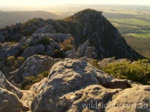 The eastern escarpment of Djibalara