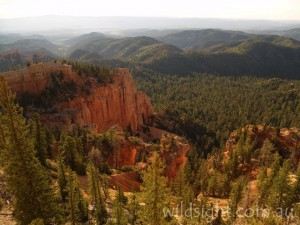 Birch Canyon, Bryce Canyon National Park