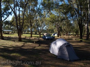 Camp Blackman, Warrumbungles
