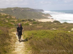 Final leg of the Great Ocean Walk