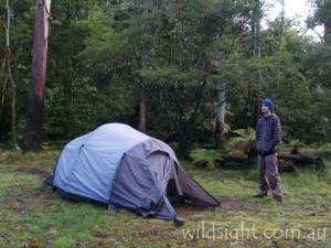New England campsite