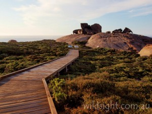Track to Remarkable Rocks