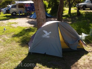 Tidal River campsite, Wilsons Promontory