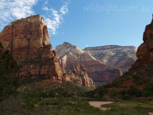 Angels Landing from the floor of Zion Canyon