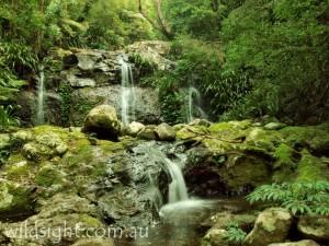 Goorawa falls