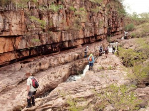 Kakadu hikers
