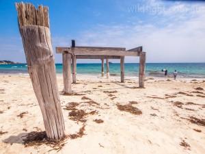 Hamelin Bay jetty