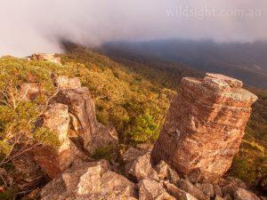 Morning fog at Ruined castlle