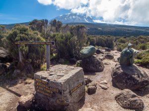 Track junction on Shira plateau, Mt Kilimanjaro