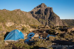 Shelf Camp, Mount Anne, South-West National Park Tasmania