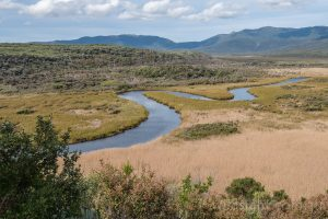 Darby River, Wilsons Promontory National Park Victoria