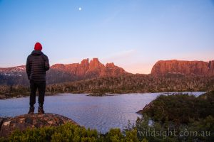 Lake Elysia sunset, Cradle Mountain-Lake St Clair National Park Tasmania