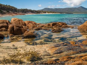 View towards Hazards Beach and Mount Freycinet as you descend to the beach