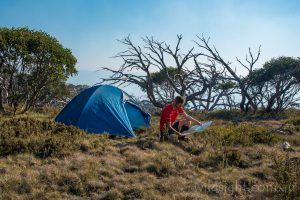 Campsite on Mt Cobberas No.1, Alpine National Park Victoria