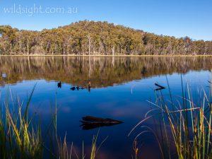 Lake Cobbler, Alpine National Park Victoria