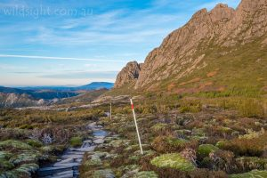 Cradle Mountain Face Track