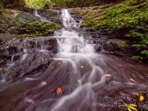 Moolgoolong Cascades