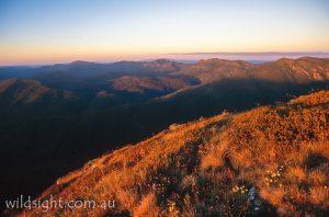 Mount Magdala sunset view, Alpine National Park Victoria